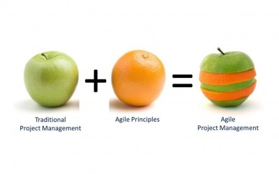 Agile Project Management changing the Business approach